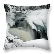 Cattyman Falls In Winter Throw Pillow
