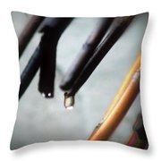 Caught In A Moment Throw Pillow
