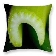 Celery Throw Pillow