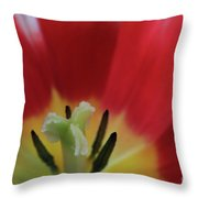Center Attraction Throw Pillow by Tracy Hall