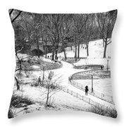 Central Park 6 Throw Pillow by Wayne Gill