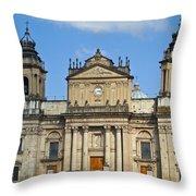 Central Park Metropolitan Cathedral Throw Pillow