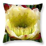 Cereus Cactus Flower Throw Pillow