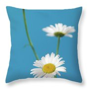 Chamomile Bouquet Throw Pillow