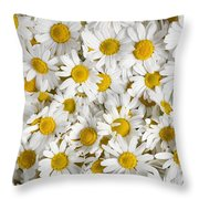 Chamomile Flowers Throw Pillow