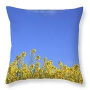 Champs De Colza Throw Pillow