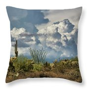 Chasing Clouds Again  Throw Pillow