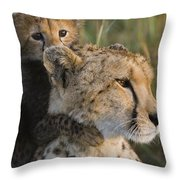 Cheetah Acinonyx Jubatus And Cub Throw Pillow