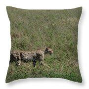 Cheetah On The Serengeti Throw Pillow