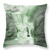Cherry Creek Lower Run Throw Pillow by Anne Norskog