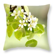 Cherry Flowers Throw Pillow