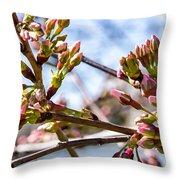 Cherry Tree Buds Throw Pillow