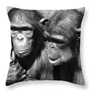 Chimpanzees Throw Pillow