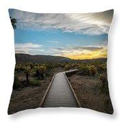 Cholla Cactus Garden, Joshua Tree National Park, Ca Throw Pillow