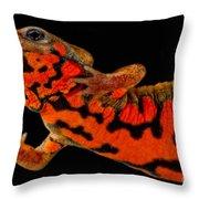 Chuxiong Fire Belly Newt Throw Pillow