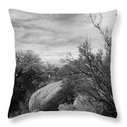 Cibola National Forest Throw Pillow