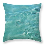 Circles On The Water Throw Pillow