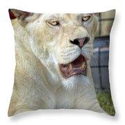 Circus Lion Throw Pillow