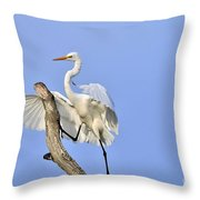 Climbing Up Throw Pillow