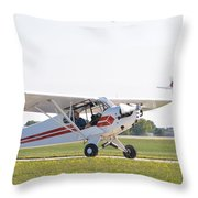 Cub And More Throw Pillow