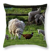 Close Encounter Of The Third Kind Throw Pillow