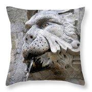 Closeup Of A Public Fountain In Dubrovnik Croatia Throw Pillow