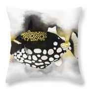 Clown Triggerfish No 01 Throw Pillow