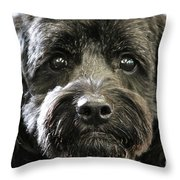Coal Throw Pillow
