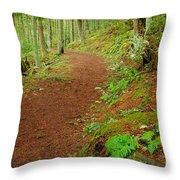 Coastal Trail Throw Pillow