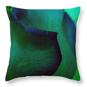 Coated In Envy Throw Pillow