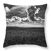Cocodrie Marsh Throw Pillow