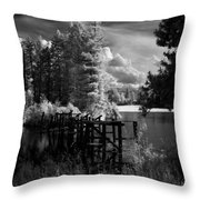 Cocolala Creek Slough Throw Pillow