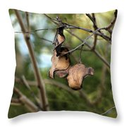 Coffee Brown Pods Throw Pillow