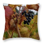 Colchagua Valley Vineyard  Throw Pillow