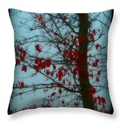Cold Day In Winter Throw Pillow