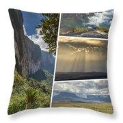 Collage Of Table Mountain Roraima Throw Pillow