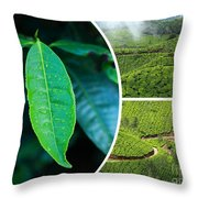 Collage Of  Tea Plantations In Munnar  Throw Pillow