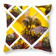 Collage Of Western Honey Bee Throw Pillow