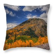 Color In The Clouds Throw Pillow