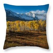 Colorado Fall II Throw Pillow