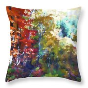 Colorful Autumn Trees In Forest Throw Pillow