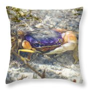 Colorful Crabstract 2 Throw Pillow
