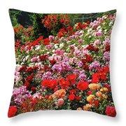 Colorful Spring Rose Garden Throw Pillow