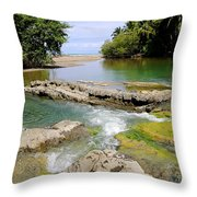 Colorful Waterway Throw Pillow