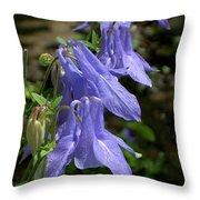 Columbine Surprise Throw Pillow