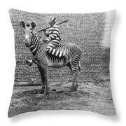 Comic Criminal Riding A Zebra Throw Pillow