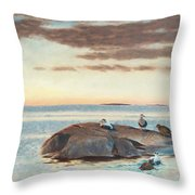 Common Eiders On A Rock Throw Pillow
