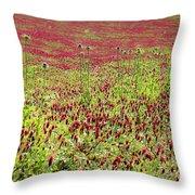 common sainfoin Onobrychis viciifolia Throw Pillow