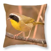 Common Yellow-throat Throw Pillow