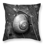 Conch Throw Pillow